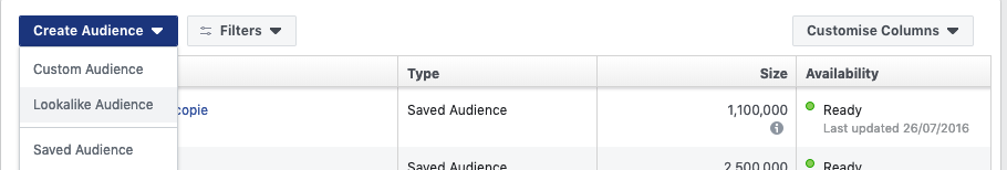 Facebook Ads Lookalike Audiences